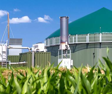 Plantas de Biogás en Reino Unido